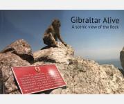 Gibraltar Alive